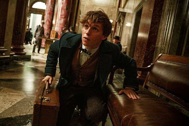 Fantastic Beasts And Where To Find Them Info