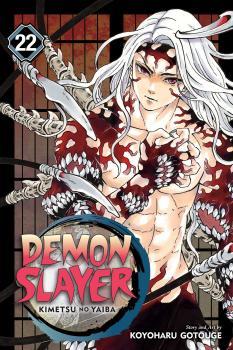 Demon Slayer: Kimetsu no Yaiba vol 22 GN Manga