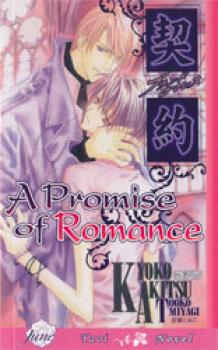 Promise of romance, a Novel