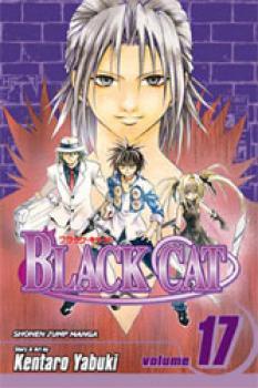 Black cat vol 17 GN