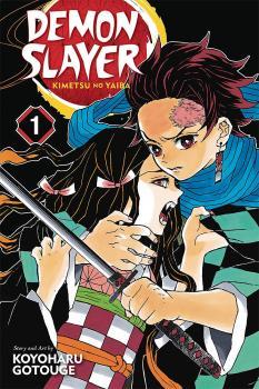 Demon Slayer: Kimetsu no Yaiba vol 01 GN Manga