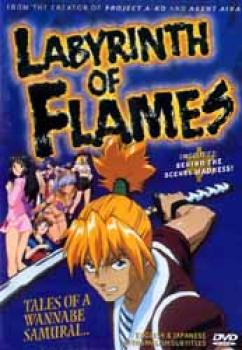 Labyrinth of flames DVD