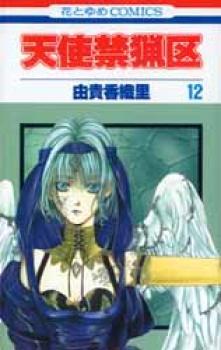 Angel sanctuary manga 12