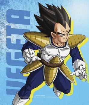 Dragon Ball Z Season 01 Steelbook Blu-Ray