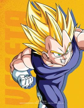 Dragon Ball Z Steelbook Season 08 Blu-Ray