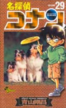 Detective Conan manga 29