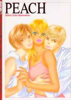 Peach girl Art book SC