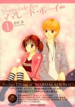Marmalade boy Perfect edition manga 01