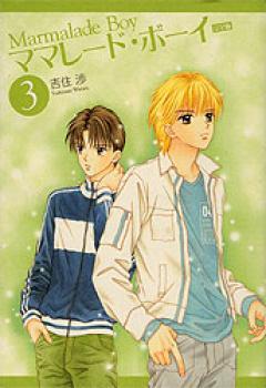Marmalade boy Perfect edition manga 03